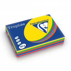 Trophée Intensive (Colori Assortiti)